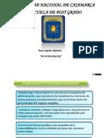 58675631-Diapositivas-Outsourcing.pptx