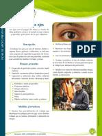 Cuidado+de+los+ojos.pdf