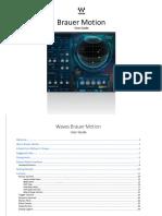 Brauer Motion.pdf