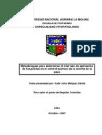 Tesis-Metodologías para determinar el intervalo de aplicación de fungicidas en el control químico de la rancha de la papa.pdf