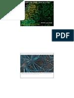 TP cellule1.pdf