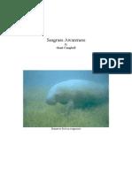 Seagrass Awareness