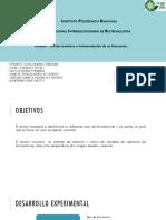 Tipos de Biorreactores Ppt