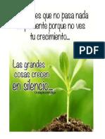 Flor Plantas