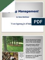 101 - Spring Management.pdf