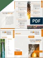 Programa DDE 2015.pdf
