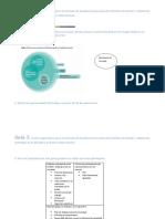 Guia_3_Perspectiva de Género-sistematización MH (Reparado)