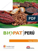 Boletin n5 Cacao