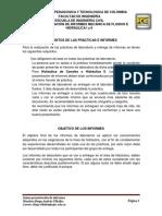 Guías Presentación de Informes 2