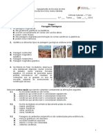 T1 - Paisagens e Minerais - Formativo Recolhas