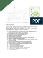 bicicleta ecologica