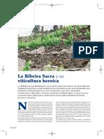 env 354 50-51 reportaje vinos