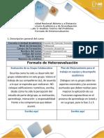 8- Formato Heteroevaluación.docx