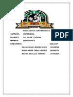 TRABAJO DE FINAL pdf..pdf