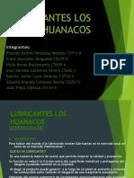 Lubricantes Los Guanacos Diapos