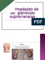Enfermedades de Las Glandulas Suprarrenales
