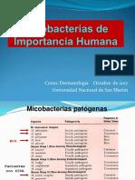 07. Dermatología-micobact Lepra 2016