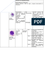Observacion de Leucocitos