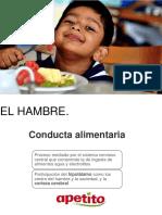 3.HAMBRE