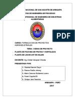 2 IDEAS DE PROYECTO - FORMULACION.docx