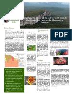 Biogeografía histórica de la Flora del Escudo Guayanés, Serranía de la Macarena y Pantepui