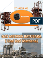 8. Coal Bed Methane.pptx