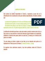 17_10_28_parte_2-4.pdf