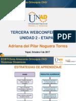 Presentación 3 Webconference