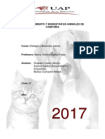 Comportamiento y Bienestar en Animales de Compañia