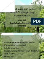 Forest_and_peat_land_fires_-_Mr__J__Kieft.pdf