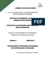 ENSAYO EMBARAZO PRECOZ.docx