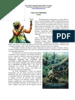 17 OSSÃE.pdf