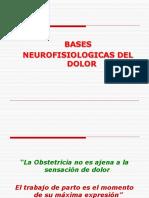 Neurofisiologia Del Dolor 2010