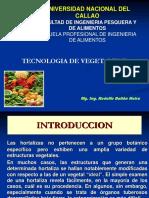 Introduccion Vegetales II