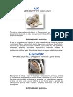 Plantas Medicinales, San José Resumido
