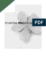Agricultura-Ecologica-Especies-de-vegetacion-espontanea-Plantas-bioindicadoras.pdf