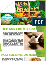 Los Minerales Diapos