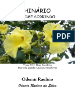 Odemir Raulino - Daime Sorrindo