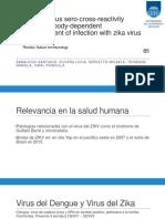 Dengue Virus Sero Cross Reactivity Drives Antibody Dependent Enhancement of Infection (2)