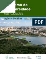 Livro Panorama Das Cidades Web-1