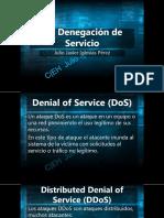 10 Denegación de Servicio.pdf