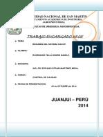 Imprimir Resumen Plan Haccp
