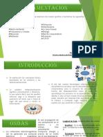 Fundamentacion - Grafia y Animada_diana Bonilla