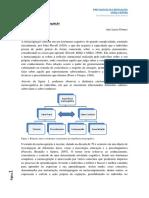 Aula 7 -Texto 1 Metacognição