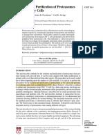 Purificación proteosoma