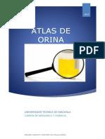 AC-Atlas de Orina PDFgRAFICOS cOREGIDO.docx