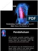 Ppt Long Case Lbp Why