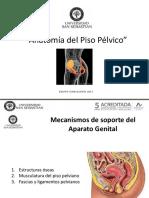 Clase 6, Anatomia y Fisiologia Del Piso Pelvico Clase