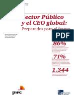 CEO en El Sector Público