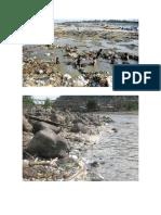 Rios Contaminados